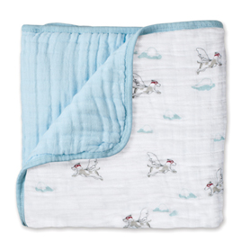 liam the brave - flying dog classic dream blanket
