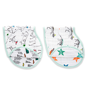 color pop 2-pack classic burpy bibs